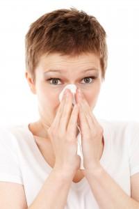Auch Schnupfen gehört zu den Symptomen einer Inhalationsallergie.