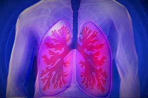 Bei Inhalationsallergien treten die Symptome vorwiegend an den Atemwegen auf.