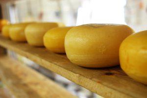 Bei Käse gilt je reifer er ist, umso geringer ist der Anteil an Laktose.