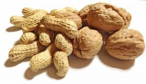 Eine Nahrungsmittelunverträglichkeit ist zu unterscheiden von einer Lebensmittelallergie wie gegen Nüsse.