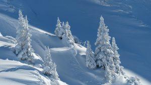 Bei einer Kälteallergie treten die Symptome bei kalten Wetter im Winter verstärkt auf.