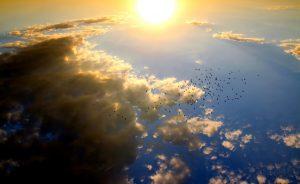 Bei der Sonnenallergie gibt es verschiedene Formen.