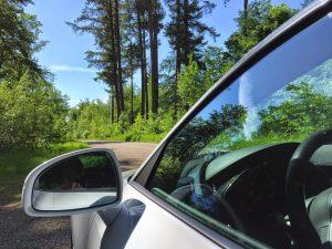 Allergien beim Autofahren, was gilt es hierbei zu beachten?