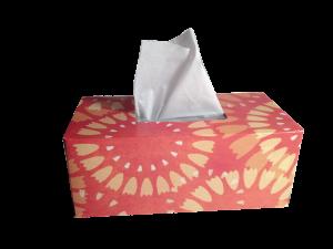 Der Heuschnupfen gehört zum dem Sofortyp I Allergien.