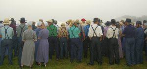 Amish people leiden selten an Allergien, wie kommt das?