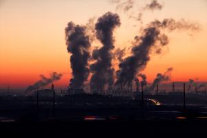 Abgase und Umweltverschmutzungen bedingen die Zunahme von Allergien.