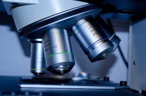 Durch verschiedene Test können Allergien ermittelt werden.