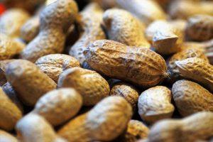 Bei der Nahrung führen häufig Nüsse zu Allergien.