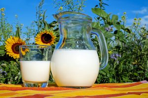 Nahrungsmittelunverträglichkeit im Alltag, die Laktoseintoleranz ist eine häufig vorkommende Unverträglichkeit gegenüber Kuhmilch.