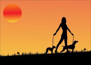 Wer einige Tipps beachtet, kann auch bei einer Hundehaarallergie weiterhin seinen Hund behalten.