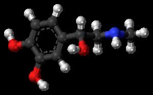 Adrenalin ist das erste Hormon welches man rein herstellen und dessen Struktur man bestimmen konnte.