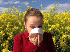 Heuschnupfen ist die am weitesten verbreitete Allergie in Deutschland.