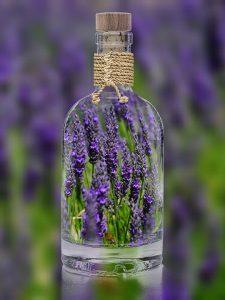 Heilpflanzen wie Lavendel können bei Erkrankungen helfen.