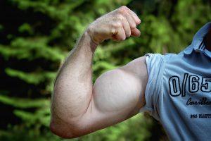 Muskelaufbau wird durch BCCAs gefördert.