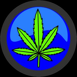 Auch eine Cannabis-Allergie ist möglich.