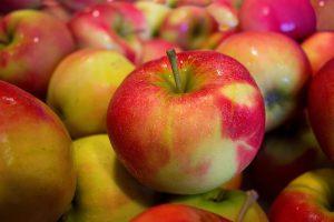 DieApfelallergie führt zu allergischen Symptomen beim Verzehr von Äpfeln.