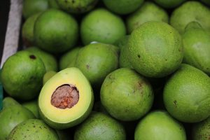 DieAvocadoallergie führt zu Symptomen beim Verzehr von Avocados.