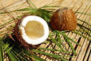 Die Kokosallergie richtet sich gegen Allergene der Kokosnuss.