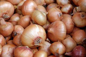 Vor allem der Verzehr von rohen Zwiebeln, auf Englisch Onions, kann zu einer Zwiebelallergie führen.