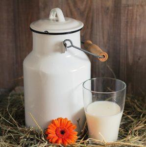 Milch und Heu können vor Allergien schützen.