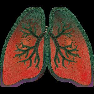 Heuschnupfen und Asthma sind eng miteinander verknüpft.