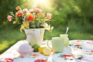 Bei den Blumen gilt es möglichst bunte zu wählen, je buter, so die Faustregel, umso besser sind sie für Allergiker zu vertragen.