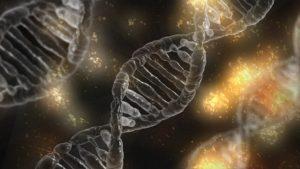 Gene sind mitverantwortlich für Allergien.