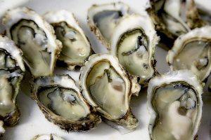 Austern gehören zu den Schalentieren die ebenfalls zu allergischen Beschwerden führen können.